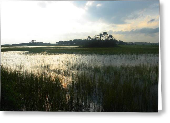 Marsh Scene Greeting Cards - Private Palm Island Greeting Card by Susanne Van Hulst