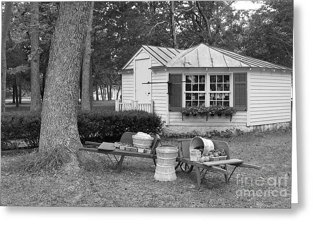 Historic Country Store Greeting Cards - Produce Stand  Greeting Card by Nancy Patterson