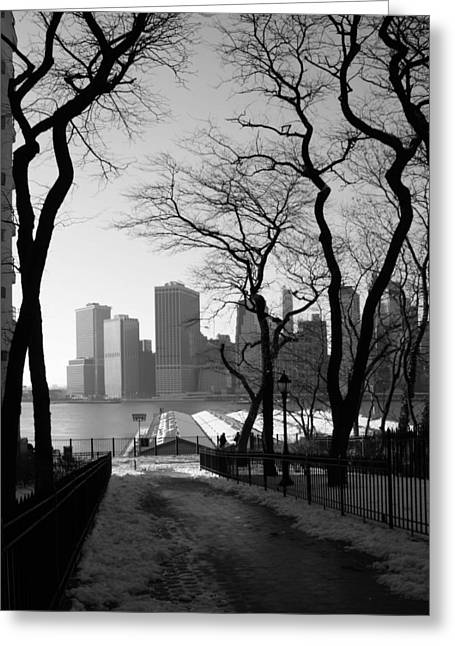 Brooklyn Promenade Greeting Cards - Promenade Trees Greeting Card by Christopher Kirby