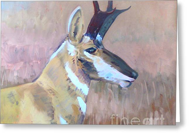 Pronghorn Greeting Cards - Pronghorn Greeting Card by Donald Maier