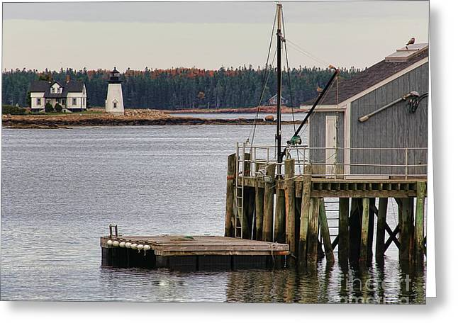 Prospects Greeting Cards - Prospect Harbor Lighthouse Greeting Card by Jack Schultz