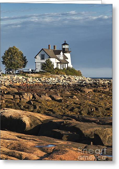 Prospects Greeting Cards - Prospect Harbor Lighthouse Greeting Card by John Greim