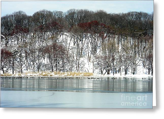 Bklyn Greeting Cards - Prospect Park Lake Winter Snow Greeting Card by Mark Gilman