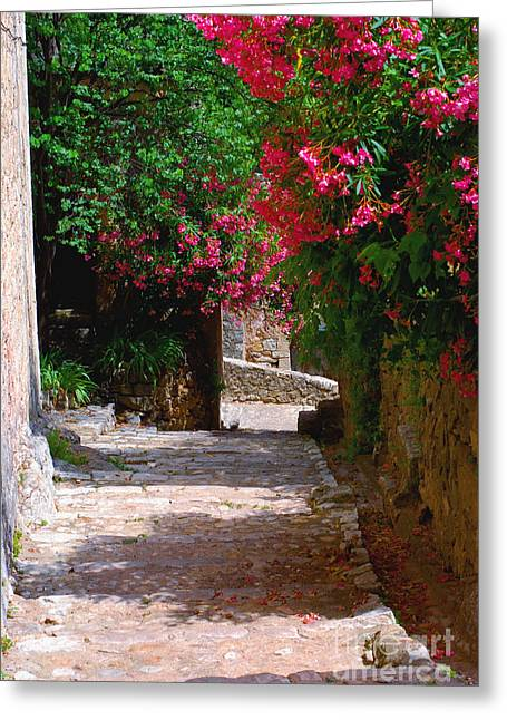 Provence Village Greeting Cards - Provencal Village Street Greeting Card by Andrea Simon