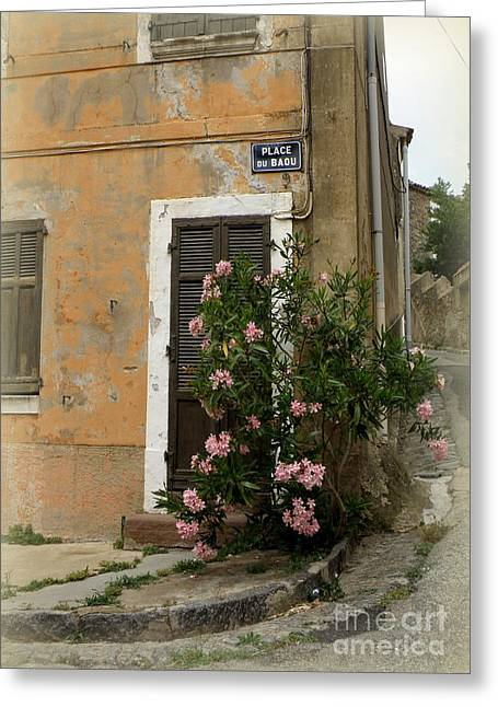 Lainie Wrightson Greeting Cards - Provence Door Number 9 Greeting Card by Lainie Wrightson
