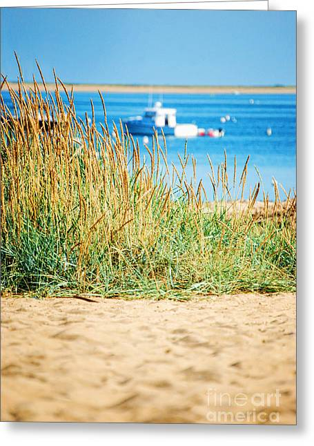 Provincetown Greeting Cards - Provincetown MA Greeting Card by HD Connelly