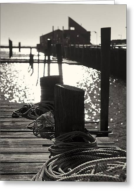 Provincetown Greeting Cards - Provincetown Marina Greeting Card by Dapixara Art
