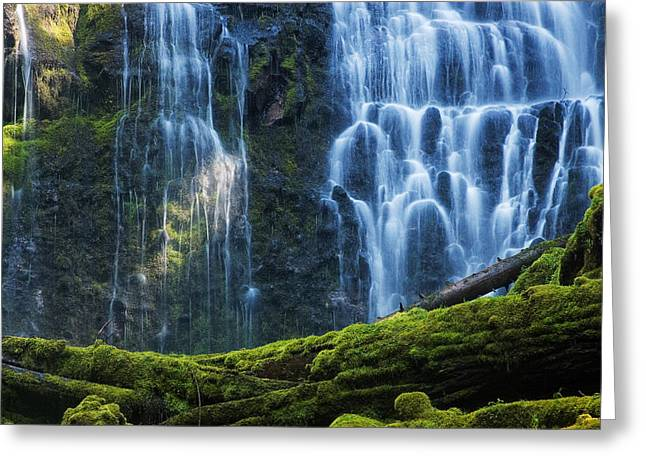Proxy Falls Greeting Card by Mark Kiver