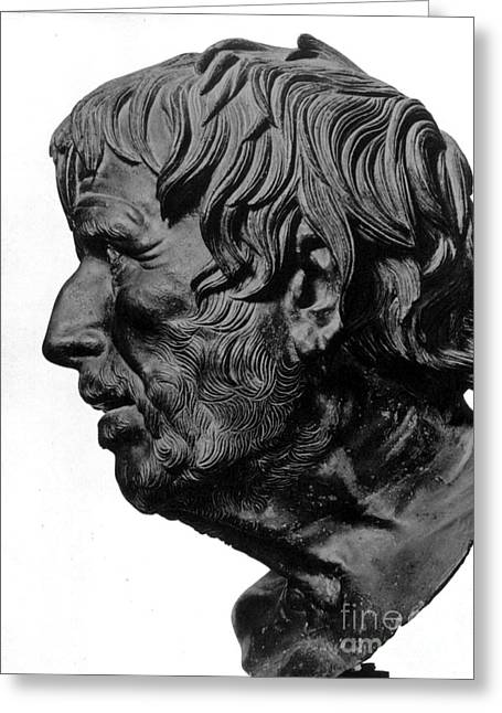 Statue Portrait Greeting Cards - Pseudo-seneca Greeting Card by Granger