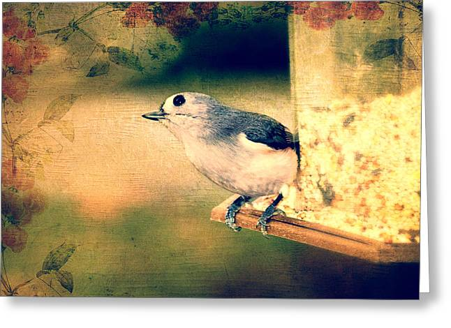 Bird Photographs Greeting Cards - Pucker Up Greeting Card by Kathy Jennings