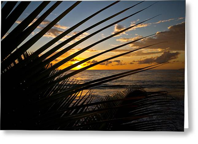 Best Sellers -  - Rincon Beach Greeting Cards - Puerto Rican Sunset III Greeting Card by Tim  Fitzwater