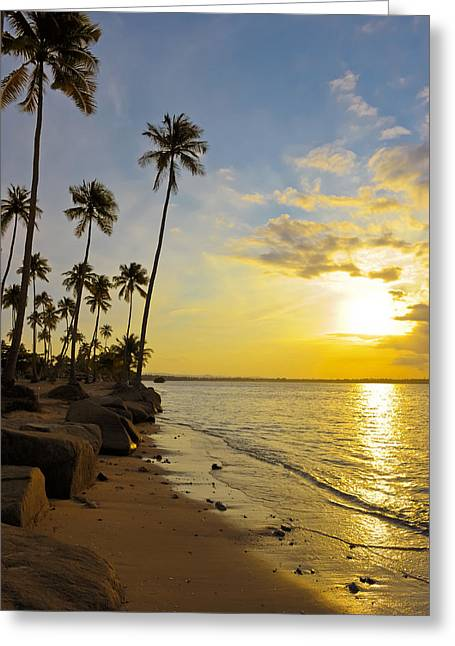 Sandy Beaches Greeting Cards - Puerto Rico Sunset Greeting Card by Stephen Anderson