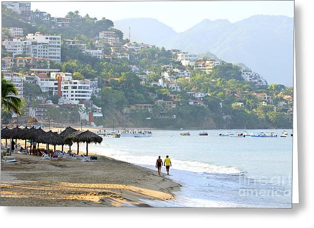 Puerto Vallarta Beach Greeting Card by Elena Elisseeva
