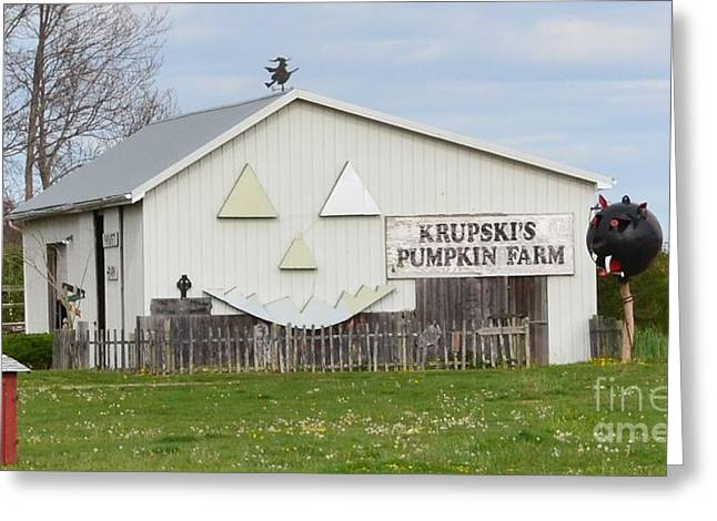 New York Greeting Cards - Pumpkin Farm Greeting Card by Artie Wallace
