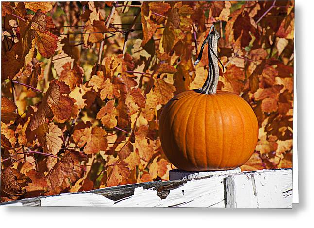 White Grape Greeting Cards - Pumpkin on white fence post Greeting Card by Garry Gay