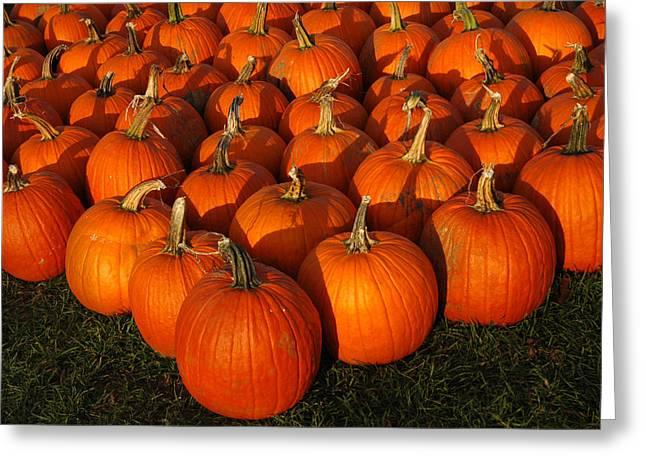 Carved Leaves And Flowers Greeting Cards - Pumpkin Pie anyone Greeting Card by LeeAnn McLaneGoetz McLaneGoetzStudioLLCcom