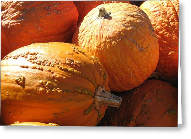 Cindy Plutnicki Greeting Cards - Pumpkin shadows Greeting Card by Cindy Plutnicki