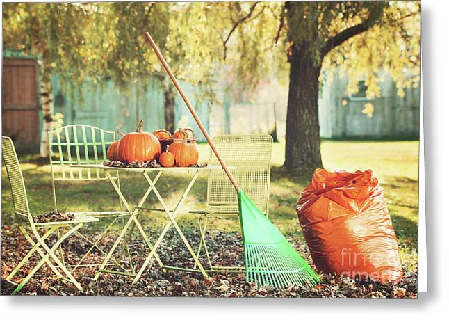Raking Greeting Cards - Pumpkins on the table Greeting Card by Sandra Cunningham
