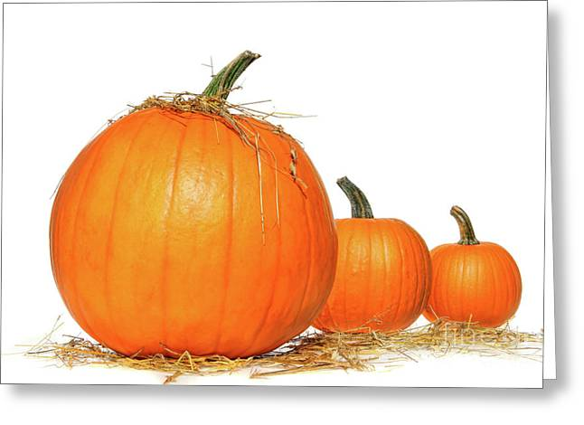 Pumpkins With Straw On White  Greeting Card by Sandra Cunningham