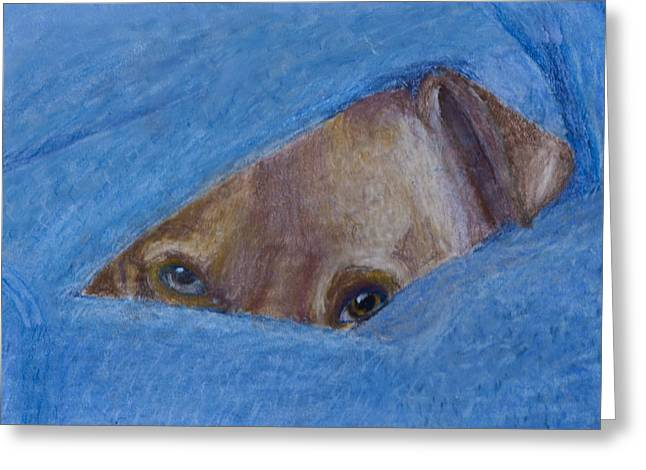 Puppies Pastels Greeting Cards - Pup In A Blanket Greeting Card by  David Willingham