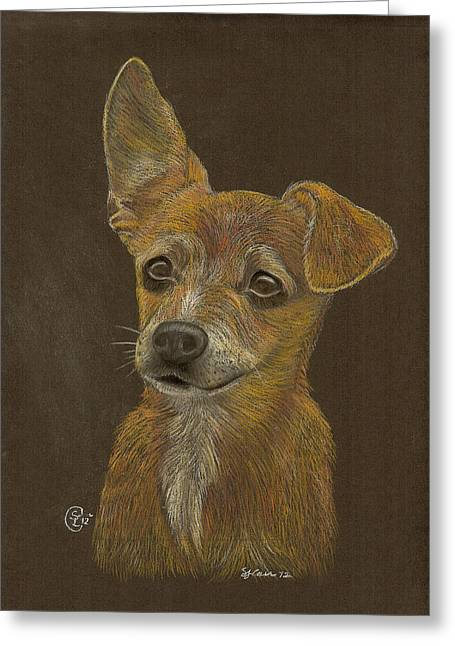 Pup Greeting Card by Stephanie L Carr