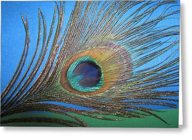 Purdy As A Peacock Greeting Card by Kathy Clark