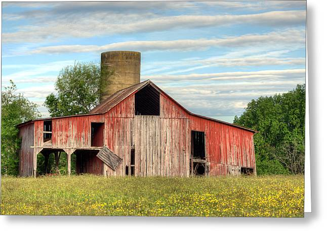 Pure Country Greeting Card by JC Findley