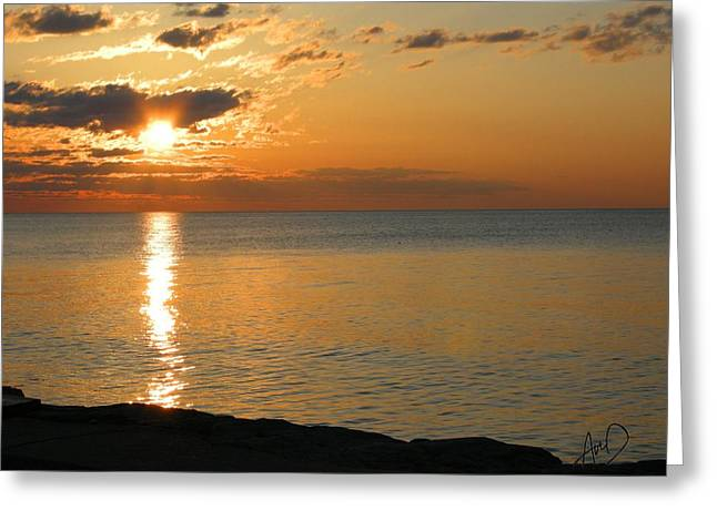 Photorealism Greeting Cards - Pure Gold Greeting Card by Douglas Auld