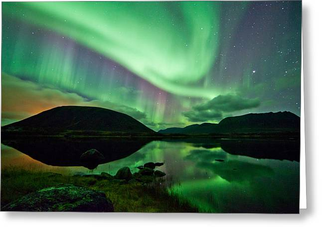 Photographing Aurora Greeting Cards - Purple and Green Greeting Card by Frank Olsen