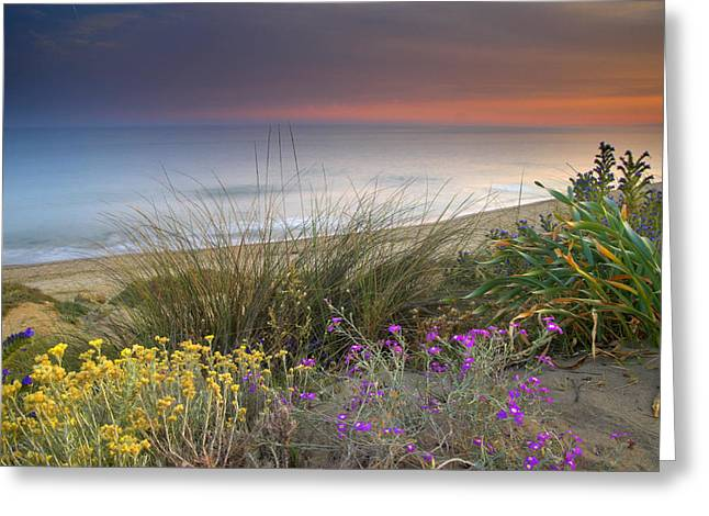 Blue Green Wave Greeting Cards - Purple and yellow flowers at the sea Greeting Card by Guido Montanes Castillo