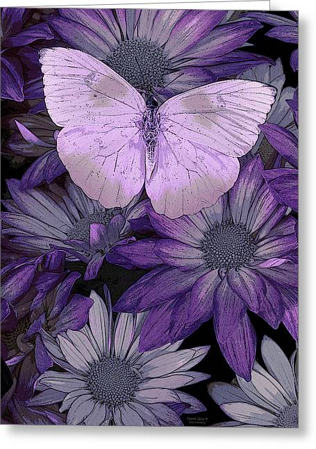 Butterfly Paintings Greeting Cards - Purple Butterfly Greeting Card by JQ Licensing