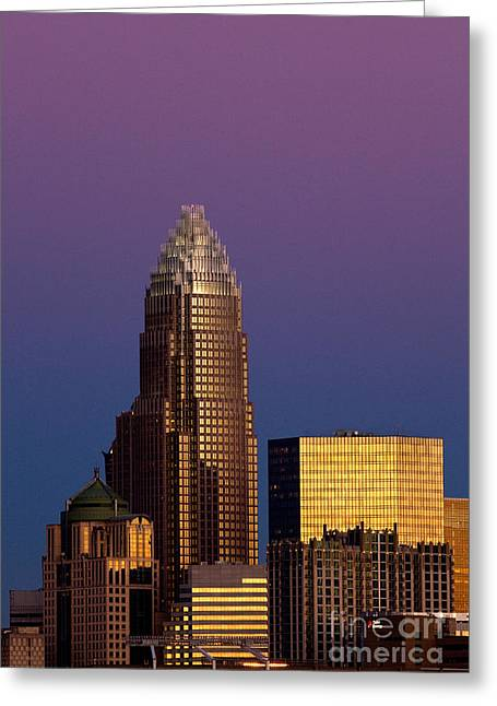 Downtown Charlotte Nc Greeting Cards - Purple Charlotte Skyline Greeting Card by Patrick Schneider
