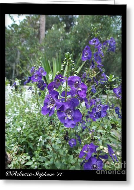 Purple Flora Greeting Card by Rebecca Stephens