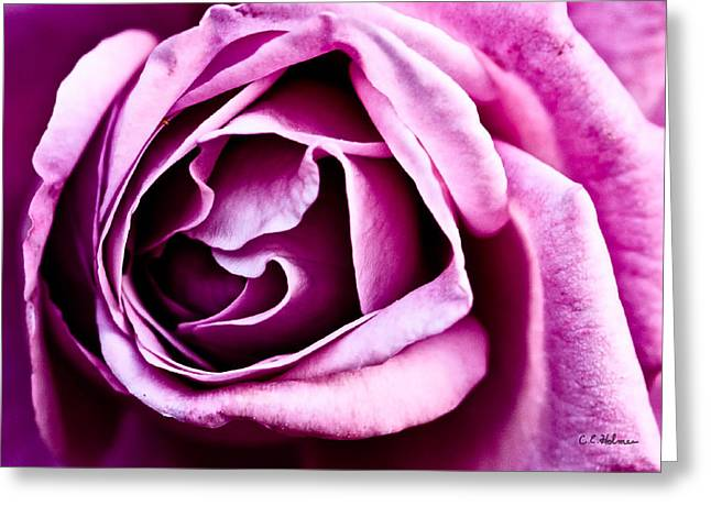 Purple Folds Greeting Card by Christopher Holmes