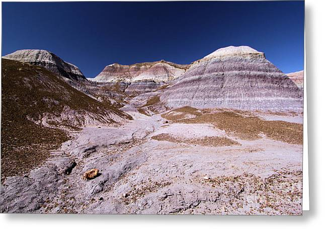 Petrified Forest Arizona Greeting Cards - Purple Landscape Greeting Card by Adam Jewell