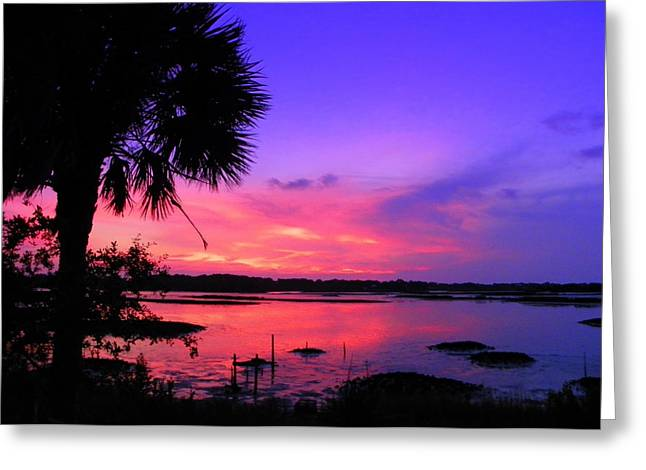 Cedar Key Greeting Cards - Purple Palm Sunset Greeting Card by Sheri McLeroy
