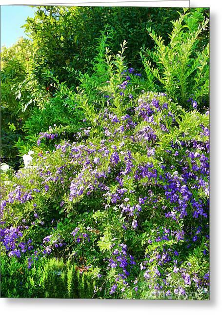 Purple Paradise  Greeting Card by Mariola Bitner