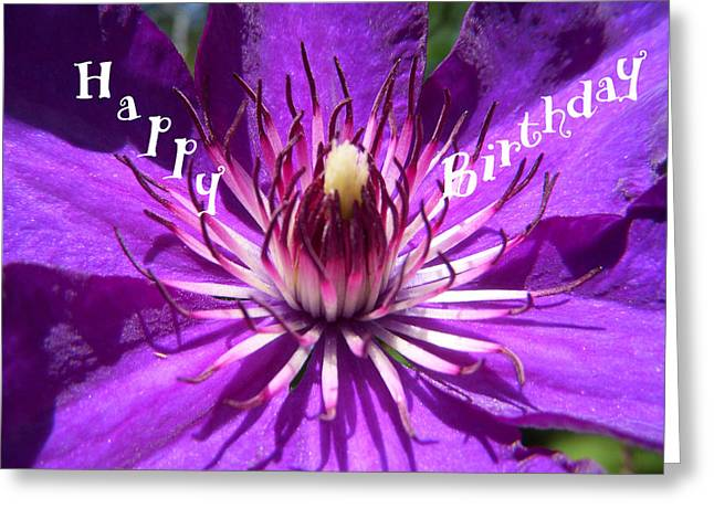 Floral Greeting Cards - Purple Passion Birthday Greeting Card by Aimee L Maher Photography and Art