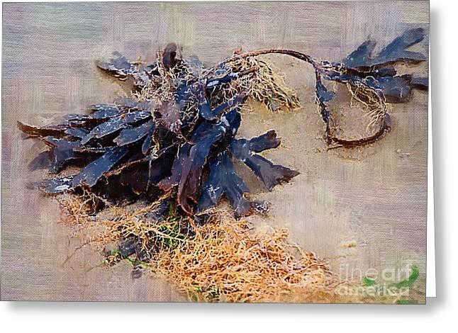 Seaweed Greeting Cards - Purple Seaweed Greeting Card by Deborah MacQuarrie