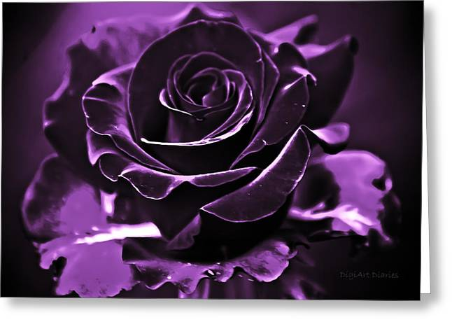 Rose Petals Greeting Cards - Purple Seduction Greeting Card by DigiArt Diaries by Vicky B Fuller