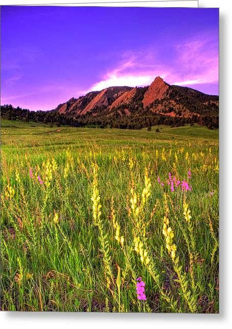 Flatirons Greeting Cards - Purple Skies and Wildflowers Greeting Card by Scott Mahon