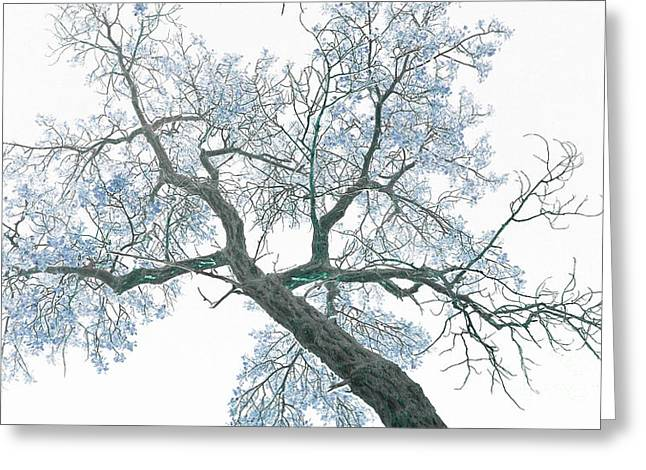 Trees Images Greeting Cards - Purple tree 2 Greeting Card by Rebecca Margraf