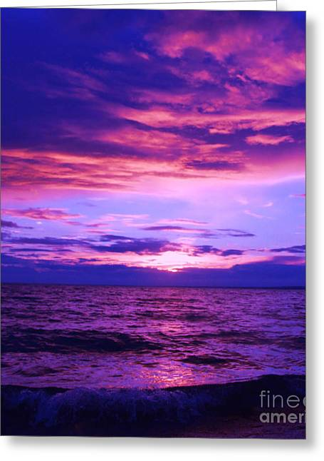 Marianne Nana Betts Photography Greeting Cards - Purplosion Greeting Card by Marianne NANA Betts