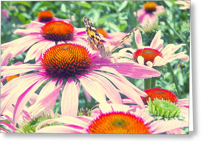 Bunt Greeting Cards - Purpur Garten Greeting Card by Angela Doelling AD DESIGN Photo and PhotoArt