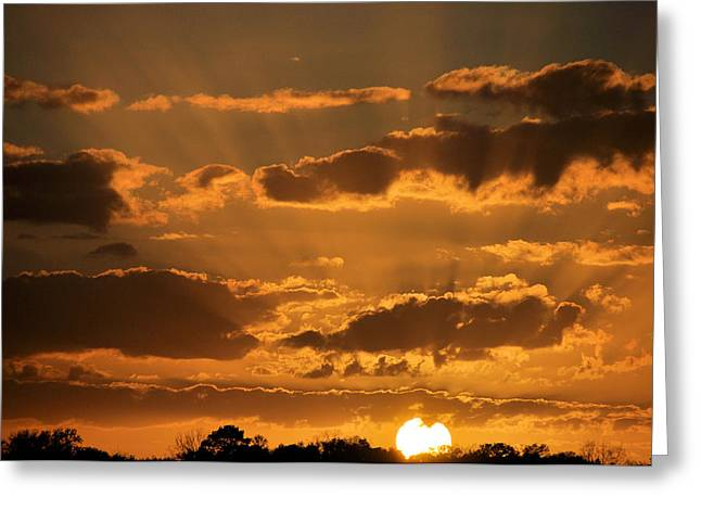Apricot Greeting Cards - Put Another Day To Rest Greeting Card by Jan Amiss Photography