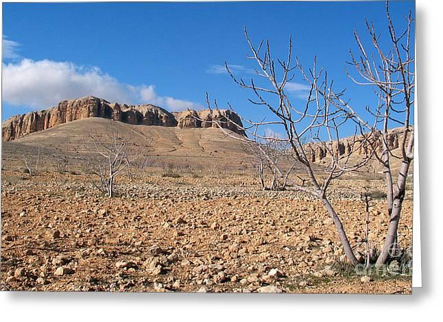 Issam Hajjar Greeting Cards - Qalamoun mountains Greeting Card by Issam Hajjar