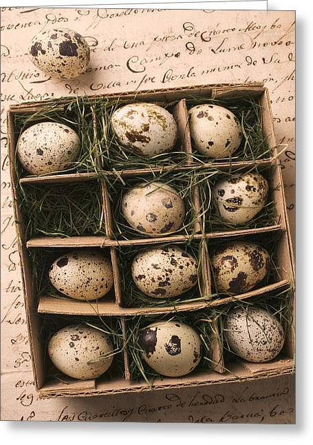 Cardboard Photographs Greeting Cards - Quail Eggs In Box Greeting Card by Garry Gay
