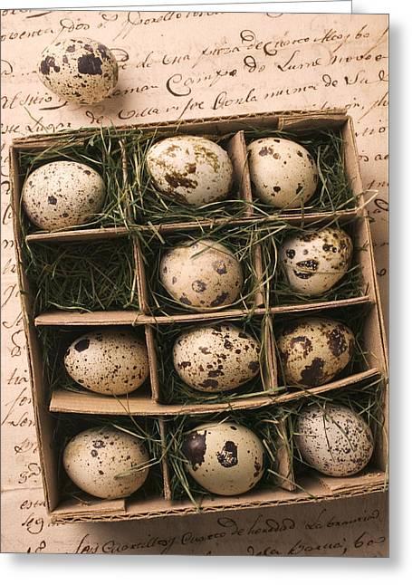 Quail Eggs In Box Greeting Card by Garry Gay