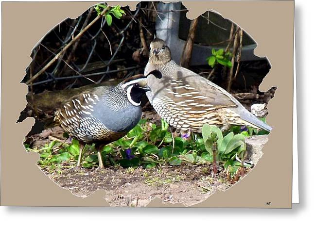 Endearing Greeting Cards - Quail Mates Greeting Card by Will Borden