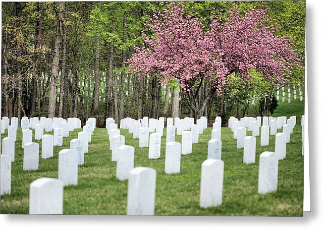 Us Army Air Corp Greeting Cards - Quantico National Cemetery Greeting Card by JC Findley
